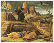 Religious Art Painting Posters - The Agony in the Garden Poster by Andrea Mantegna