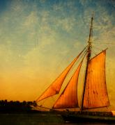 Schooner Prints - The America Nr 3 Print by Susanne Van Hulst