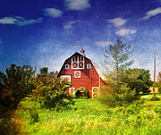 Amish Country Prints - The Amish House Print by Susanne Van Hulst