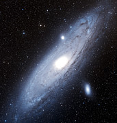 Messier 31 Framed Prints - The Andromeda Galaxy Framed Print by Charles Shahar