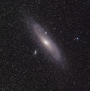 Elliptical Galaxy Posters - The Andromeda Galaxy Poster by Phillip Jones