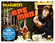 Lugosi Photos - The Ape Man, Bela Lugosi, Lobbycard by Everett