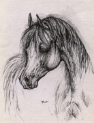 Animals Drawings - The arabian horse with thick mane by Angel  Tarantella