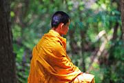 Buddhist Monk Photos - The Art of Meditation by Pete Reynolds