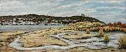 Rumson Art - the Atlantic Highlands from Sandy Hook by Douglas Keil