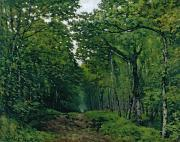 Tree-lined Metal Prints - The Avenue of Chestnut Trees Metal Print by Alfred Sisley