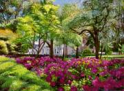 Most Sold Prints - The Azaleas of Savannah Print by David Lloyd Glover