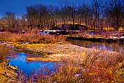 Stream Prints - The Banks of the South Platte River II Print by David Patterson