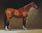 Thoroughbred Paintings - The Bay Hunter by Janet  Crawford