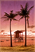 Pink Sunset Posters - The Beach Poster by Debra and Dave Vanderlaan