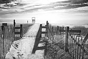 Beach Fence Prints - The Beach in Black and White Print by Dapixara Art