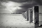 Stephen Clarridge Metal Prints - The Beach Monochrome Metal Print by Stephen Clarridge