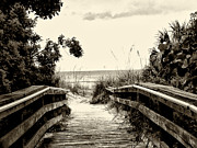 The Beach Path - Clearwater Beach Print by Bill Cannon