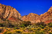 Fossilized Art - The Beautiful Red Rock Canyon by David Patterson