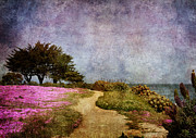Point Park Digital Art Posters - The Beckoning Path Poster by Laura Iverson