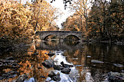 Fairmount Park Prints - The Bells Mill Bridge in Autumn Print by Bill Cannon