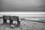 Cardiff By The Sea Prints - The Bench Print by Larry Marshall