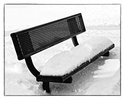 Terri Pakula Posters - The Bench Poster by Terri Pakula