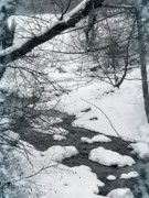 Change To The Cold Prints - The Bend Of Winter Print by Debra     Vatalaro
