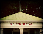 New To Vintage Framed Prints - The Big Red Spring Framed Print by Lisa Russo