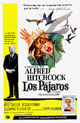 1960s Poster Art Photos - The Birds, Aka Los Pajaros, Alfred by Everett