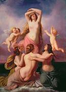 Putti Paintings - The Birth of Venus by Eduard Steinbruck