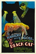Horror Fantasy Movies Posters - The Black Cat, Boris Karloff, Harry Poster by Everett