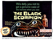 Horror Movies Framed Prints - The Black Scorpion, On Right Mara Framed Print by Everett