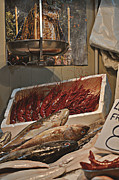 Malaga Photos - The Blessed Fish Market by Mary Machare