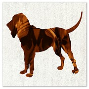 Bloodhounds Prints - The Bloodhound Print by Daryl Macintyre