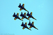 Melissa Nickle - The Blue Angles