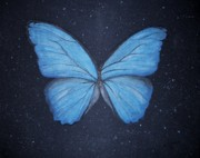 Morph Painting Prints - The Blue Butterfly Print by Edwin Alverio