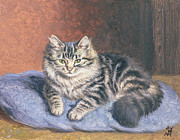 Tabby Paintings - The Blue Cushion by Horatio Henry Couldery