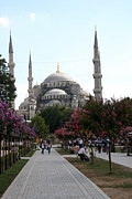 The Blue Mosque  - Istanbul Print by Christiane Schulze