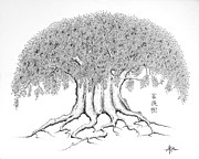 Buddhism Drawings Acrylic Prints - The Boddhi Tree Acrylic Print by Robert May