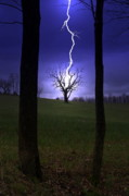 Lightning Photos - The Bolt by Emily Stauring