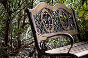 Garden Pyrography Originals - The Botanical Bench by Christian Griffin