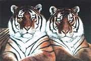 Southeast Asia Paintings - The Boys    2 tigers by DiDi Higginbotham
