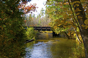 Woods Photos - The Bridge over the River by Sheryl Thomas