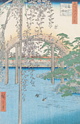 Flying Drawings Posters - The Bridge with Wisteria Poster by Hiroshige