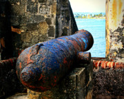 Rustic Art Prints - The Cannon  Print by Perry Webster