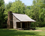 Log Cabins Prints - The Carter Shields Cabin Print by George Jones