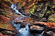 Autumn Scenes Acrylic Prints - The Cascades of Chesterfield Gorge Acrylic Print by Thomas Schoeller