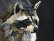 Raccoon Paintings - The Cat Food Bandit by J W Baker