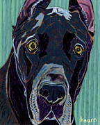 Great Dane Portrait Framed Prints - The Celebrity Life of Harley Ellens Framed Print by David  Hearn