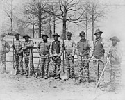 1880s Framed Prints - The Chain Gang, Thomasville, Georgia Framed Print by Everett