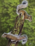 Squirrel Painting Acrylic Prints - The Chase Acrylic Print by Greg Halom