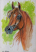 Horse Drawing Prints - The Chestnut arabian Horse 5 Print by Angel  Tarantella