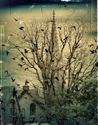 Corvidae Prints - The City Crows Print by Gothicolors And Crows