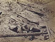 The Civil War, Dead Confederate Soldier Print by Everett